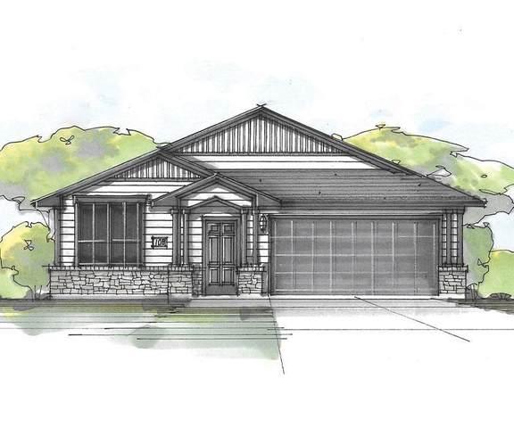 1207 Falconer Way, Austin, TX 78748 (#8762913) :: Zina & Co. Real Estate