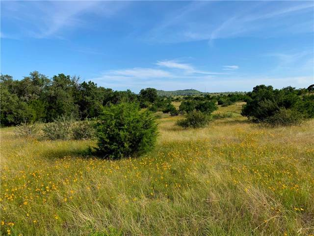 00 Odiorne Rd (Cr 208) Tr 2, Johnson City, TX 78636 (#8792579) :: Realty Executives - Town & Country