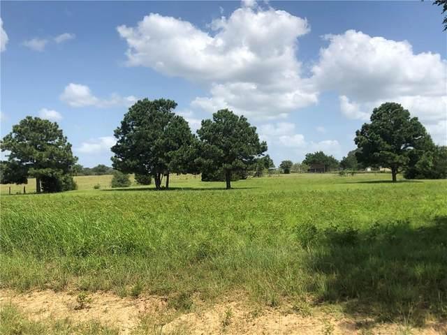 TBD Hwy 304 Highway, Rosanky, TX 78953 (#8797672) :: Papasan Real Estate Team @ Keller Williams Realty