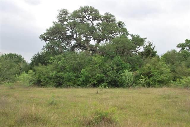TBD Birdhouse Hill Rd, Schulenburg, TX 78956 (#8804638) :: Papasan Real Estate Team @ Keller Williams Realty
