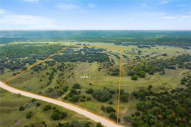 Tract 3-1 Cr 225, Briggs, TX 78608 (MLS #8818490) :: Vista Real Estate