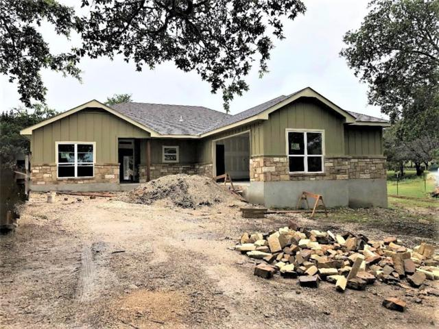 229 Breeze Pt, Fischer, TX 78623 (#8825518) :: The Perry Henderson Group at Berkshire Hathaway Texas Realty