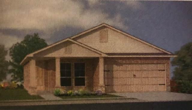 705 Ibis Falls Loop, Jarrell, TX 76537 (#8830227) :: Douglas Residential