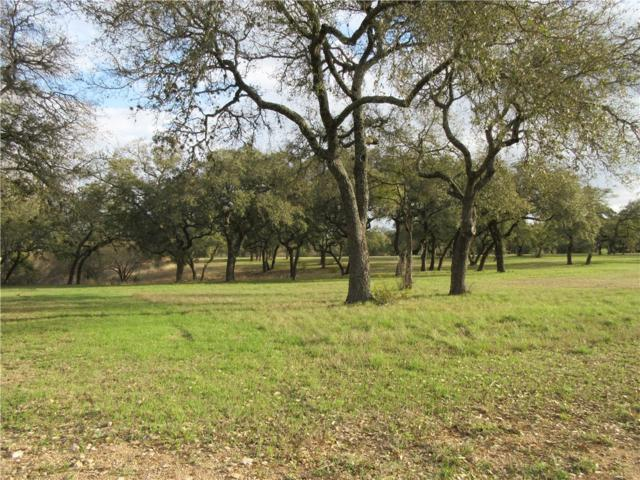 2507 Sailboat Pass, Spicewood, TX 78669 (#8845457) :: Papasan Real Estate Team @ Keller Williams Realty