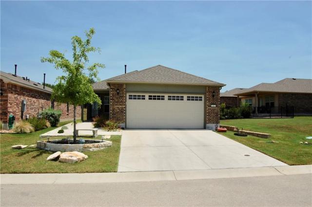 102 Martin Creek Ln, Georgetown, TX 78633 (#8865858) :: The ZinaSells Group