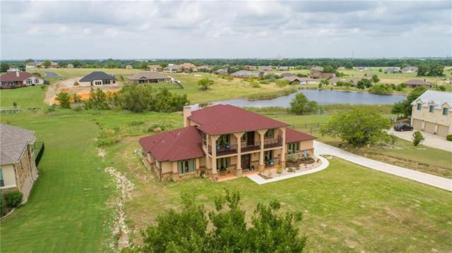 325 Comanche Cir, Hutto, TX 78634 (#8866573) :: Realty Executives - Town & Country