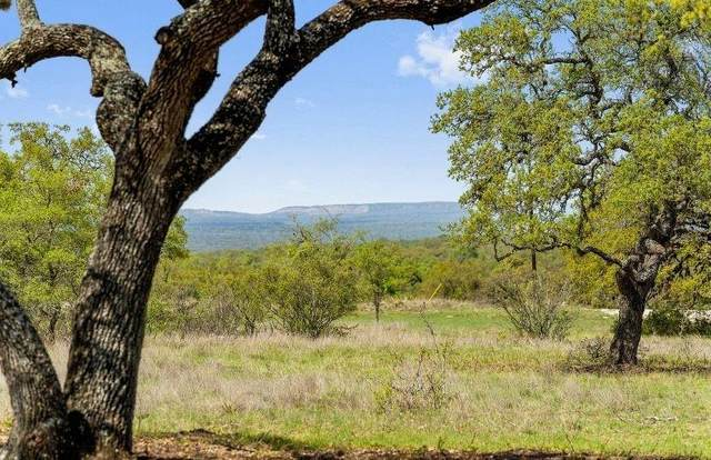 00 W Persimmons Rd W Lot 10, Johnson City, TX 78636 (#8877579) :: Azuri Group | All City Real Estate