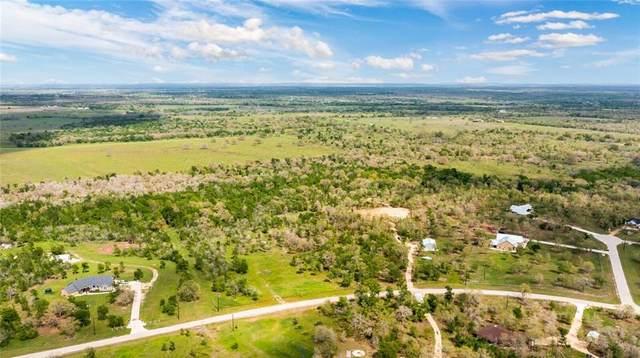 920 Spanish Oaks Blvd, Lockhart, TX 78644 (MLS #8884065) :: Bray Real Estate Group