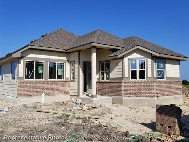 17925 Lungo, Pflugerville, TX 78660 (#8919030) :: Papasan Real Estate Team @ Keller Williams Realty