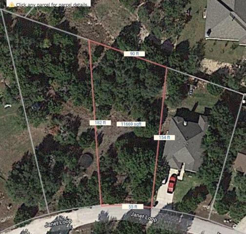 10023 Janet Loop, Dripping Springs, TX 78620 (#8940779) :: The Heyl Group at Keller Williams