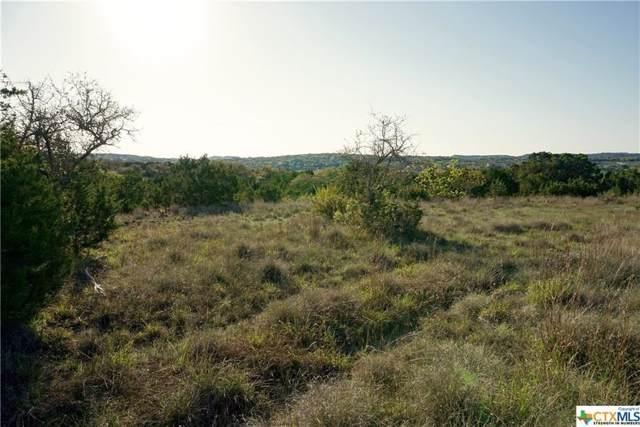 104 Santa Maria, Canyon Lake, TX 78133 (#8964498) :: The Perry Henderson Group at Berkshire Hathaway Texas Realty
