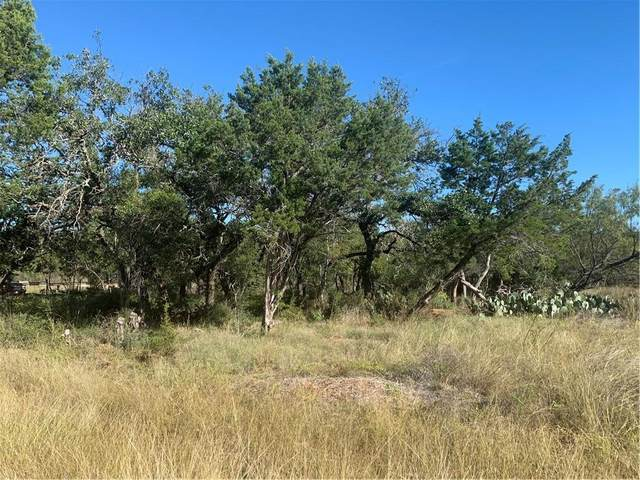 2813 Truman Dr, Lago Vista, TX 78645 (#9009728) :: First Texas Brokerage Company