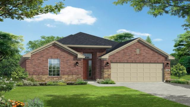 5133 Corelli Fls, Round Rock, TX 78665 (#9011350) :: Papasan Real Estate Team @ Keller Williams Realty