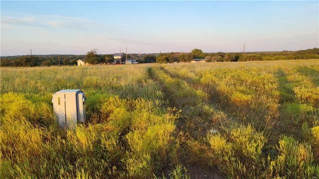 113 Fall Dr, Georgetown, TX 78633 (#9017669) :: Papasan Real Estate Team @ Keller Williams Realty