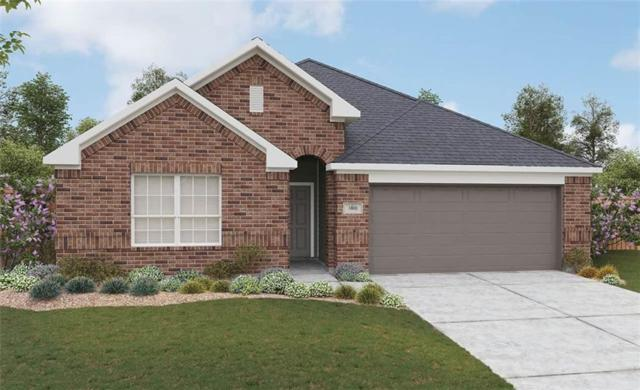 17232 Borromeo Ave, Pflugerville, TX 78660 (#9029528) :: The Heyl Group at Keller Williams