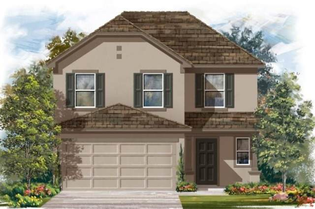 217 Conchillos Dr, Georgetown, TX 78626 (#9043631) :: Zina & Co. Real Estate