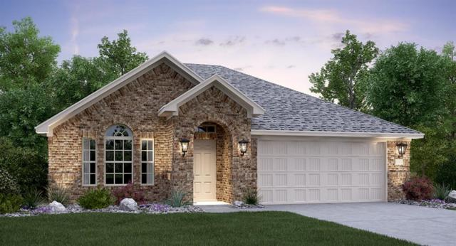 1250 Chad Dr, Round Rock, TX 78665 (#9056151) :: Douglas Residential