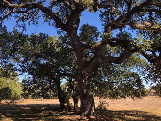 Lot 12 Las Nueves Dr, Blanco, TX 78606 (#9068388) :: The Perry Henderson Group at Berkshire Hathaway Texas Realty