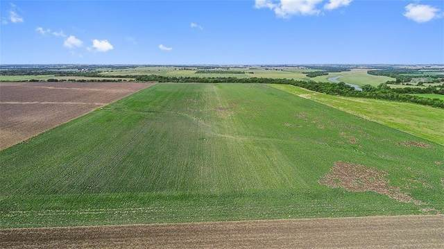TBD Fm 112, Thrall, TX 76578 (#9078486) :: Realty Executives - Town & Country