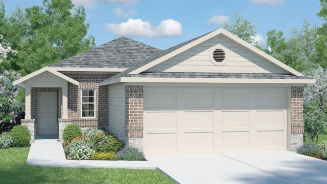668 Independence Ave, Liberty Hill, TX 78642 (#9082178) :: Zina & Co. Real Estate