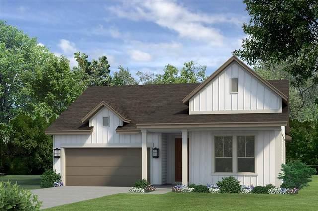 229 Leaping Holly St, San Marcos, TX 78666 (#9093812) :: Papasan Real Estate Team @ Keller Williams Realty