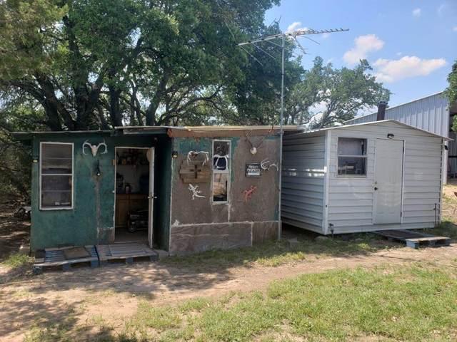 67 S Private Road 404, Goldthwaite, TX 76844 (#9125488) :: Papasan Real Estate Team @ Keller Williams Realty