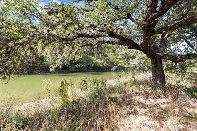 709 Medlin Creek Loop, Dripping Springs, TX 78620 (#9126802) :: Papasan Real Estate Team @ Keller Williams Realty