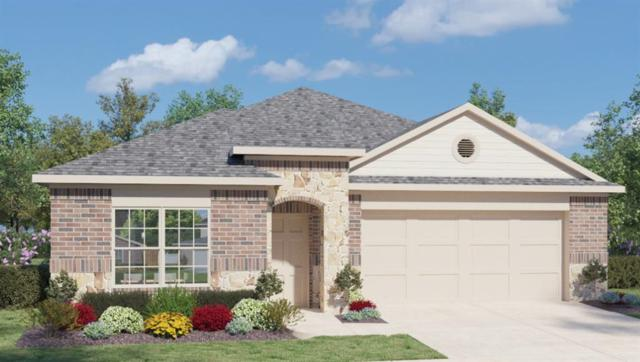 208 Shiner Ln, Georgetown, TX 78626 (#9131962) :: Watters International