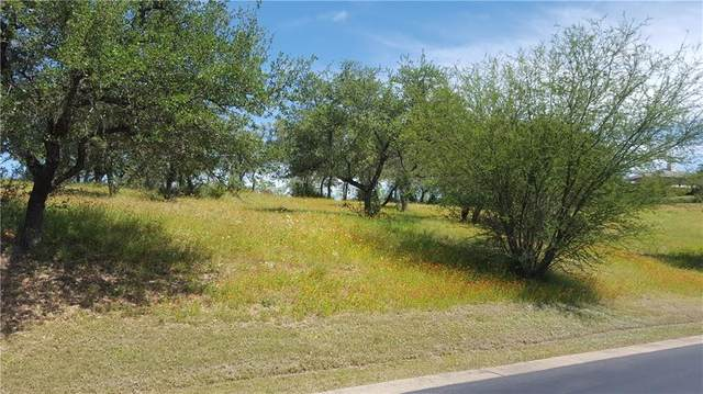 (Lot 11) Hidden Hills Dr, Spicewood, TX 78669 (#9136542) :: Papasan Real Estate Team @ Keller Williams Realty