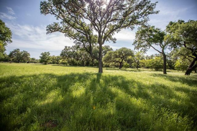 0000 Winding Oak Dr, Johnson City, TX 78636 (#9140382) :: The Perry Henderson Group at Berkshire Hathaway Texas Realty