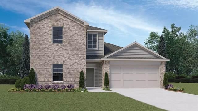 249 Sky Meadows Cir, San Marcos, TX 78666 (#9142502) :: First Texas Brokerage Company