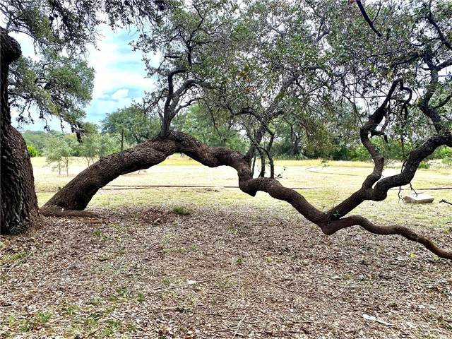 Lot 693 Hans Bell Rd, Blanco, TX 78606 (#9152701) :: Realty Executives - Town & Country