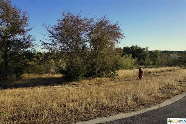 204 Ensenada, Canyon Lake, TX 78133 (MLS #9168648) :: Vista Real Estate