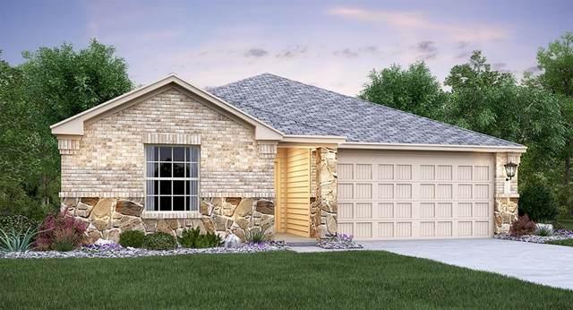 517 Marklawn Ln, Hutto, TX 78634 (#9176029) :: Zina & Co. Real Estate
