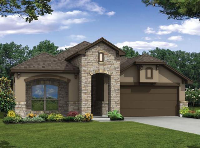 1617 Baloo Ln, Austin, TX 78652 (#9182796) :: Watters International