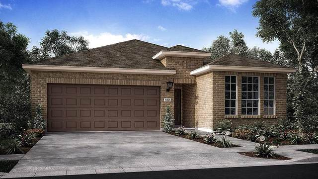 5252 Lusso Trl, Round Rock, TX 78665 (#9185369) :: All City Real Estate