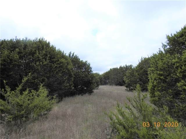 140 Oak Bend Dr, Liberty Hill, TX 78642 (#9215972) :: Lauren McCoy with David Brodsky Properties