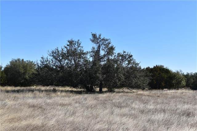 Lot 9 County Road 224, Briggs, TX 78608 (#9218876) :: Watters International
