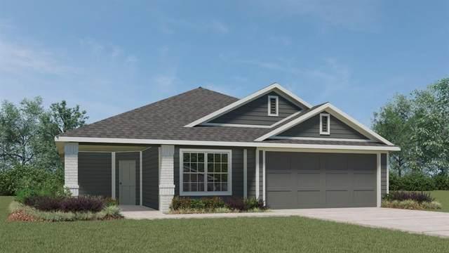255 Bunting Ln, Bertram, TX 78605 (#9228638) :: Papasan Real Estate Team @ Keller Williams Realty
