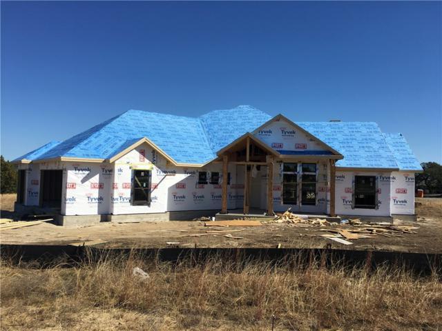 231 Joya Dr, Liberty Hill, TX 78642 (#9238724) :: Papasan Real Estate Team @ Keller Williams Realty