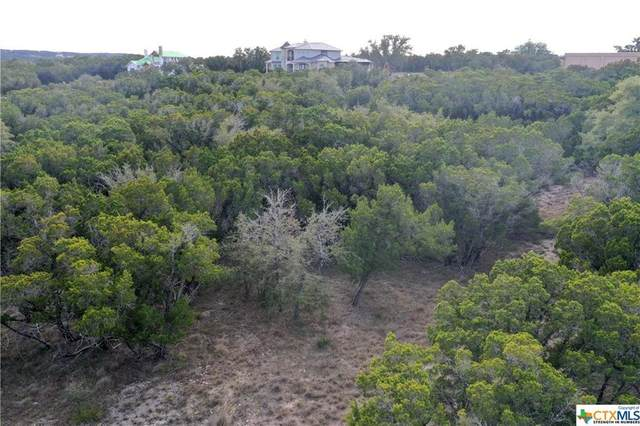 415 Cima Vis, Canyon Lake, TX 78133 (#9241237) :: Green City Realty