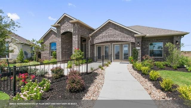 18413 Calasetta Dr, Pflugerville, TX 78660 (#9242702) :: The Perry Henderson Group at Berkshire Hathaway Texas Realty
