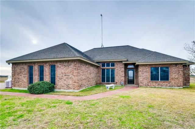 1340 County Road 134, Hutto, TX 78634 (#9245091) :: The Perry Henderson Group at Berkshire Hathaway Texas Realty