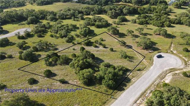 105 Thomas Frost, Blanco, TX 78606 (#9250326) :: 10X Agent Real Estate Team