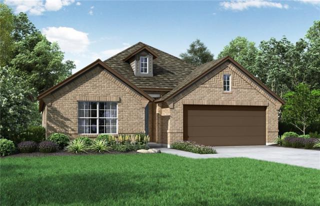 20208 Great Egret Ln, Pflugerville, TX 78660 (#9263179) :: Watters International