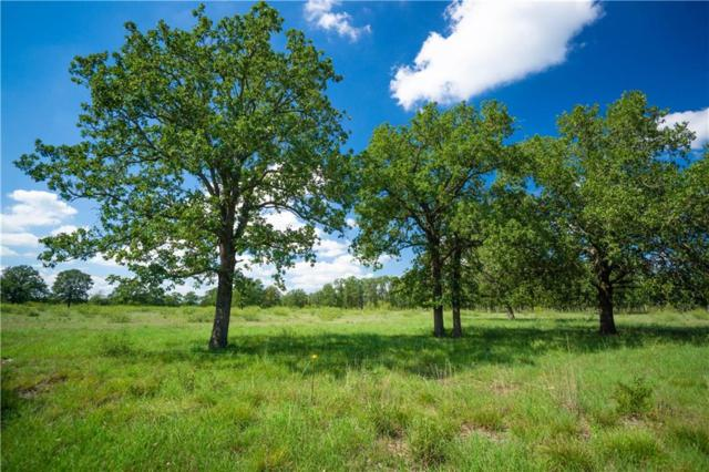 Tract 17 Cross Creek Rd, Georgetown, TX 78628 (#9265652) :: Papasan Real Estate Team @ Keller Williams Realty