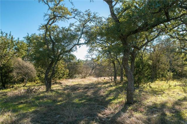 00 Pavo Springs Rd, Driftwood, TX 78619 (#9291730) :: Realty Executives - Town & Country