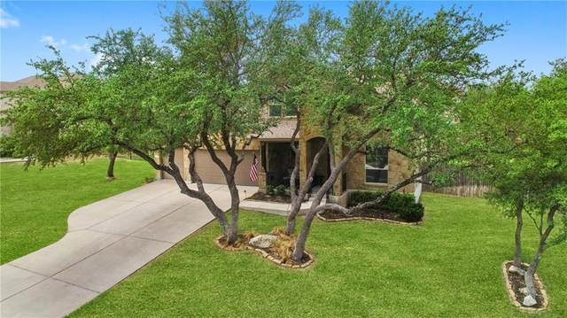 17719 Linkview Dr, Dripping Springs, TX 78620 (#9301351) :: Azuri Group | All City Real Estate