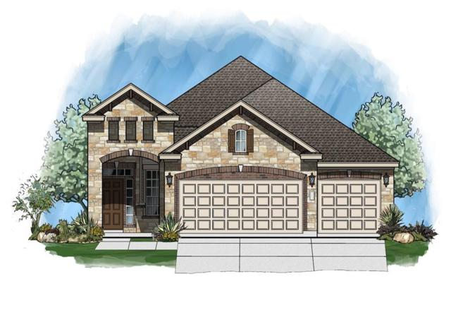 732 Manzano Ln, Pflugerville, TX 78660 (#9301357) :: 12 Points Group