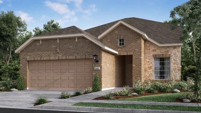 3308 Donatello Cv, Round Rock, TX 78665 (#9303407) :: Watters International